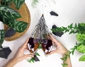 Stained Glass Glenurus .Moth Suncatcher   Stained Glass Panel   Original Design   Birthday Gift   Made To Order   Renter Friendly