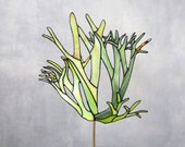 Stained Glass .Elkhorn Fern Suncatcher | Home Decor | Stained Glass Panel | Original Design | Made To Order | Renter Friendly