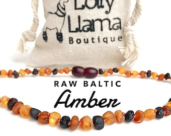 Amber Necklace Raw and Authentic Baltic Necklaces and Bracelets by Lolly Llama - Amber Jewelry for Women Men Kids