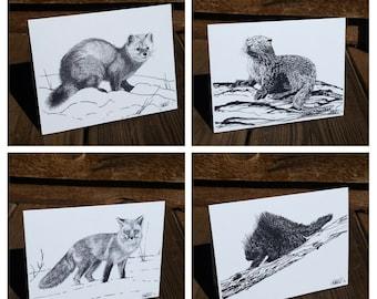 10 Blank Note Cards - Mix & Match - North American Mammals - Wildlife Art