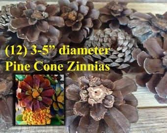 Pine Cone Zinnia, Pine Cone Flowers, Pine Cone Wreath, Pine Cone Decor, Project Pine Cones, Jumbo Pine Cone, DIY Pine Cones, Zinnia