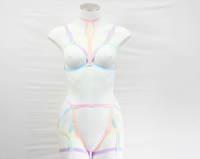 Pastel Lingerie: Rainbow Clothing, Pastel Goth, Body Harness Lingerie, Cage bralette, Garter Belt, Open Crotch, High Waist, Strappy Harness