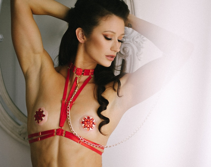 Halter Cage Harness Bralette: Red Lingerie, Exotic Dance Wear, Boudoir Outfit, Pin Up Fashion, Sexy Body Harness, Red Bralette, Crop Top