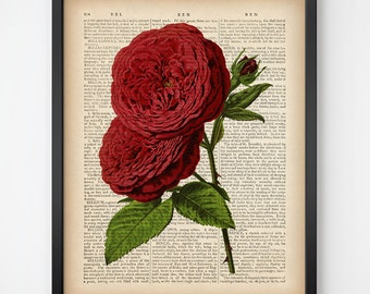 Rose art print, Dictionary rose print, Rose digital, Rose wall art, Encyclopedia print, Instant download botanical print, Flower art, JPG