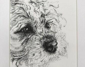 Thoughtful Border Terrier. Border Terrier. Portrait. Pen and ink. Drawing. Gift. Sweet. Art. Decoration. Dog lover. Pet portrait.