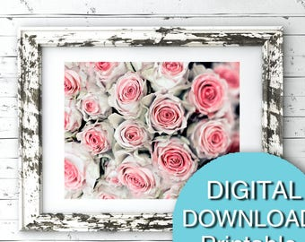 Printable Flower Photography, Pink Roses Print, 5x7 8x10 11x14 16x20 24x36 30x40 A4 A3
