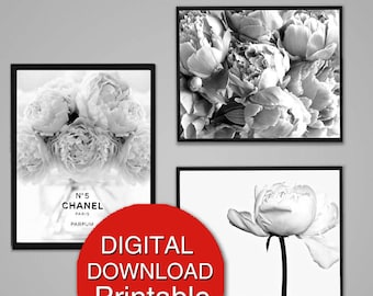 Printable Art, Peony Photography, Black and White Flower Photography, Set of 3 Prints, 8x10 A4