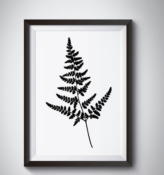 Fern Leaves Black White Posters Print Nordic Home Deco Wall Art Canvas Painting