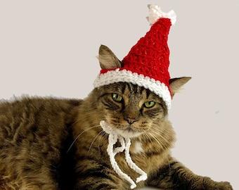 Metallic red Santa hat