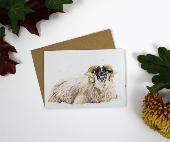 Artisan Christmas Card Bundle 2, Greeting Card, Cards, Birthday Card, Wildlife Art, Owl, Donkey