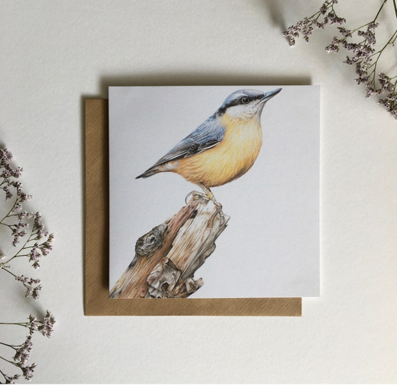 Nuthatch, Birthday Card, Cards, Occassion Cards