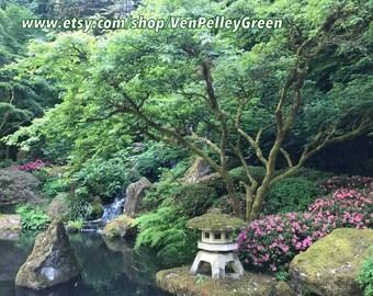 Japanese Garden, Zen, Relaxing, Photography, Wall Art
