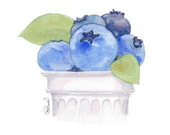 Blueberries // Food Illustration