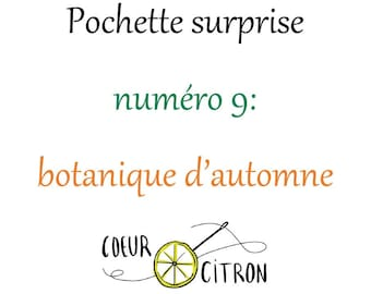 Surprise pouch number 9: Autumn botany