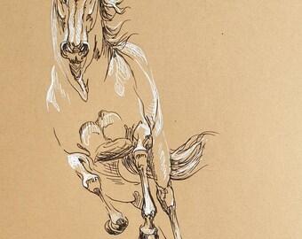 Dessin original Cheval #306