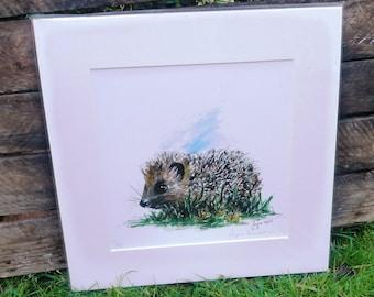 Hedgehog Giclee Print