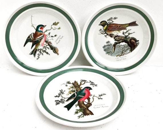 Portmeirion Birds of Britain Decorative Plate Rare 1978 by Susan Williams-Ellis collection England Green Band On Rim Salad Plate Fine China