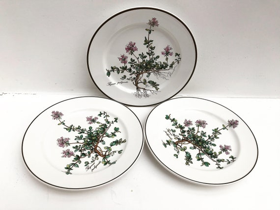 3 Botanica Vintage Villeroy and Boch Salad dish plate 7.5 Botanica model Thymus Pulegioides Made in Luxembourg replacement, Villeroy & Boch