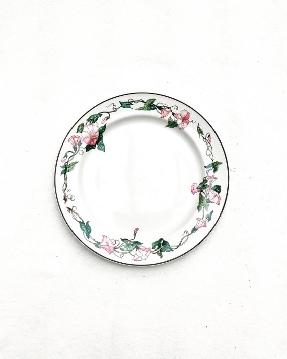 """Dinner plate Villeroy and Boch Palermo pattern 10,5""""/ 26,7 cm  set 9 dinner plate charger romantic dish Pink Morning Glory Border Brown Trim"""