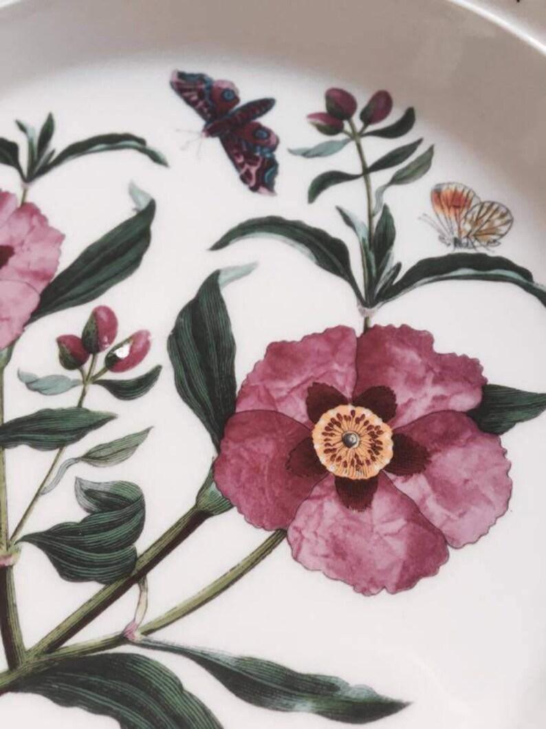 70s Botanic Garden Dinner Plate Cistus Purpureus Purple Rock Rose Made in England and a Saucer Portmeirion Dinner Plate China Replacement