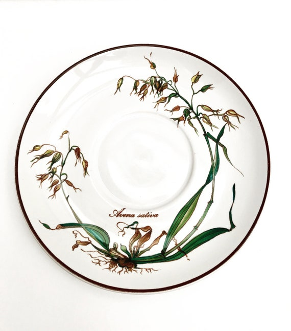 Botanica Vintage Villeroy and Boch 6 Saucer plate Botanica model Avena Sativa Made in Luxembourg replacement