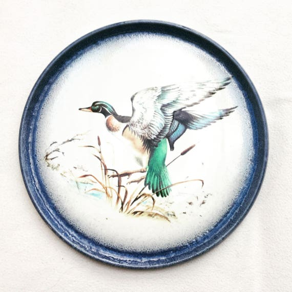 Cake Plate, Pizza Round Serving Plate, Italian Pottery, Hand painted  Pizza Plate, Duck Quiche Plate China replacement, Discontinued China,