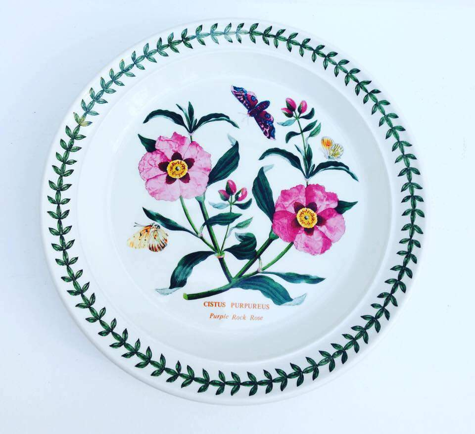 Portmeirion Dinner Plate, 70s Botanic Garden Dinner Plate Cistus Purpureus  Purple Rock Rose Made In England And A Saucer, China Replacement