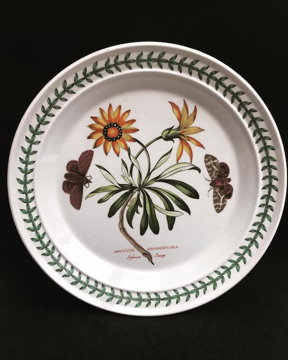 "Portmeirion Botanica  Dinner Plate 70s Botanic Garden Dinner Plate Cistus Purpureus"" Woody Nightshade Made in England  China Replacement"