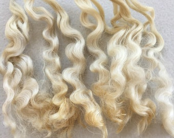 English lecister locks, 100grams, Raw Fleece, White sheep fleece