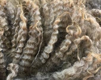 Gotland sheep locks, 100grams, Raw Fleece, silvergrey/ brown sheep fleece