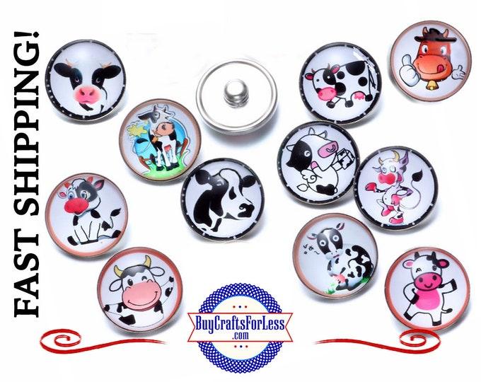 SNAP Cartoon COWs BUTTONs, SET of 4, Choose Set, 18mm INTERCHaNGABLE Button +99cent Shipping -39cents ea addf'l item