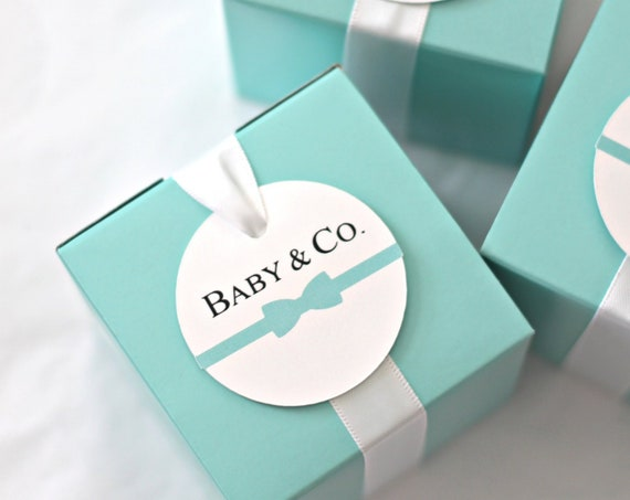 Baby and Co Favor Boxes, Robins Egg Blue Favor Boxes, Baby Shower Gift Packaging, Bridesmaid Gift Box