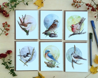 Note Card Set - 6 Watercolor Backyard Birds on Blank Recycled Cards