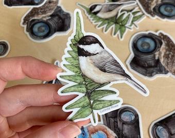 Vinyl Sticker - Carolina Chickadee on Fern watercolor