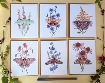 Note Card Set - 6 Watercolor Moths on Blank Recycled Cards