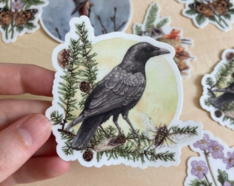Vinyl Sticker - American Crow with Cicadas watercolor