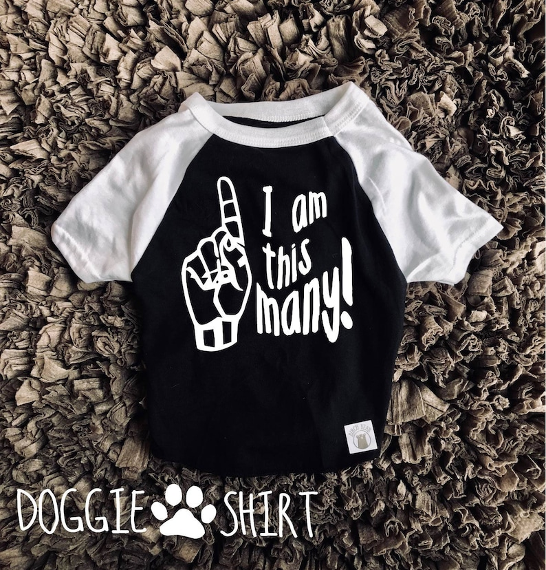 I Am One Birthday Shirt For Dogs Dog Funny
