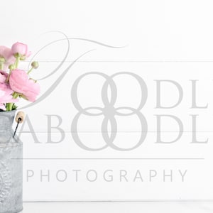 Candle Lantern DIY Real Pink Flowers Shiplap 300 DPI Frame Mockup Vertical Wood Frame Square Frame Mockup Styled Stock Photography