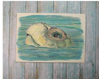"Swim Turtle 1 Blank Inside Card/Turtle Stipple Card/Turtle Art Card/Turtle In Water/ All cards fits into a 5""x 7"" frame! PERSONALIZE IT!"