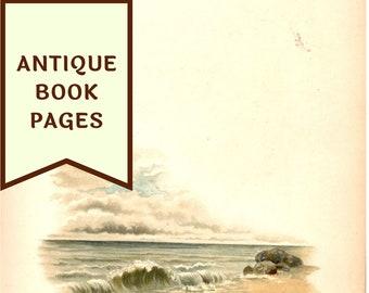 DIGITAL Antique Book Pages, Instant Download, Printable PDF