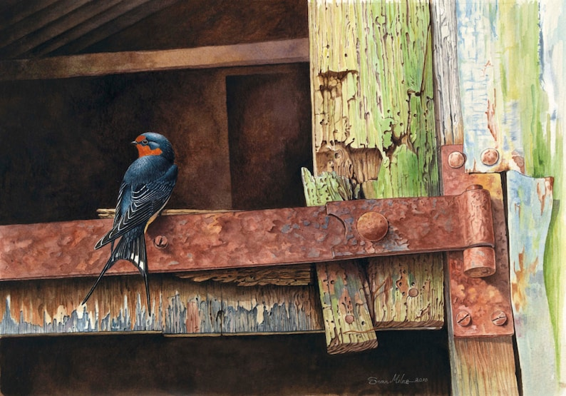 Swallow on Rusty Hinge // Archival Giclee Print // Watercolour image 0