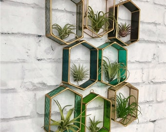 Air Plant Holder, Stained Glass, Air plant wall decor, air plant display, wall planter, terrarium , tillandsia, planter, indoor planter,
