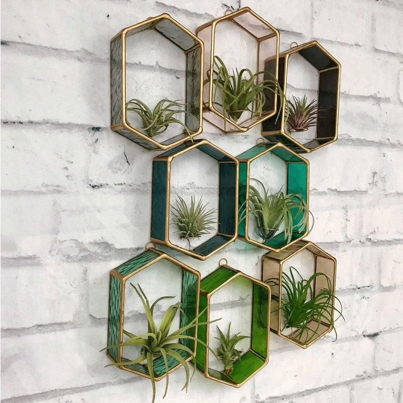 Air Plant Holder Stained Glass Air plant wall decor air image 0