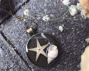 Starfish and seashell necklace