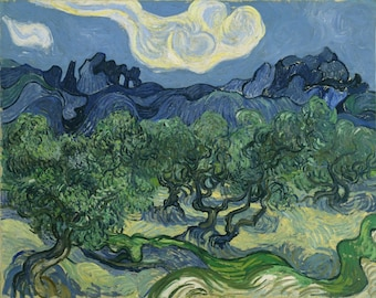 Vincent van Gogh - The Olive Trees (1889), Canvas Gallery Wrapped Giclee Wall Art Print (D5060)