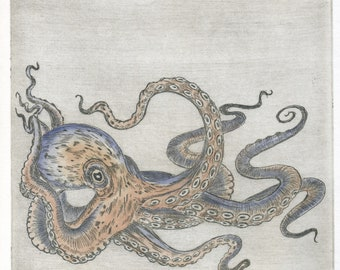 """Octopus"" original etching / Octopods/Octopus/Octopus/Kraken/etching/printmaking"