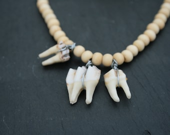 Goat teeth necklace
