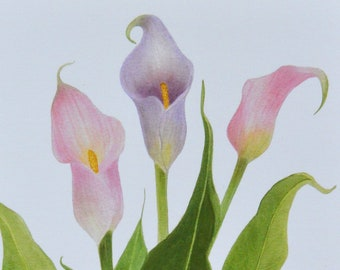 Greeting Card, Botanical, Calla Lily, Flower, Notecard, Gift Card