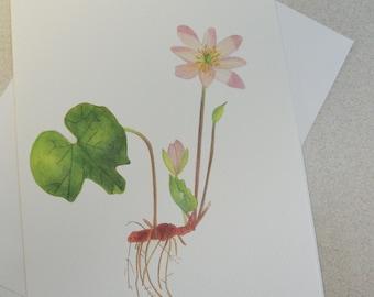 Greeting Card, Botanical, Wildflower, Notecard, Blank Notecard