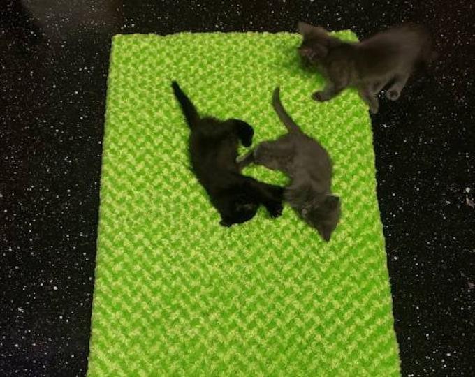 UFéMat - the cat friendly yoga mat